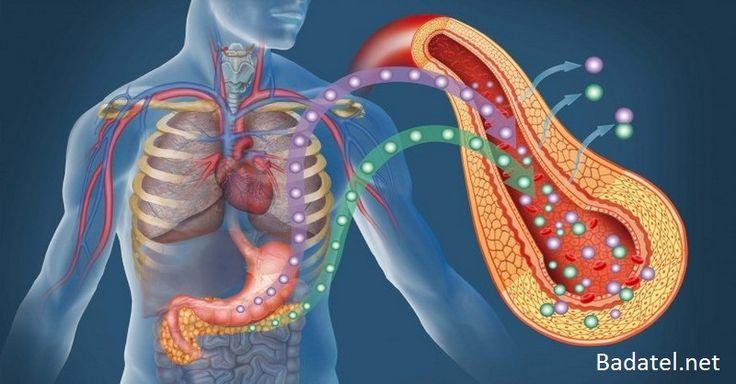Cukrovka typu 2: Nové vedecké zistenia a overená liečba