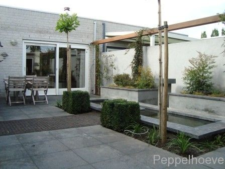 89 best images about tuin on pinterest gardens wisteria and garden water features - Eigentijds pergola design ...