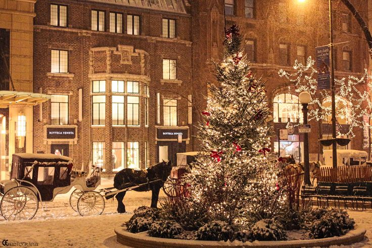 Fresh Snow in Chicago by CE Photography. Pinned by #CarltonInnMidway - www.carltoninnmidway.com