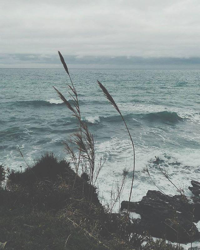 Storm. #unangeloinviaggio  #italia #italy #calabria #belvederemarittimo #cosenza #mare #sea #storm #tempesta #igersitalia #igerscalabria #igerscosenza #fotografia #volgoitalia #volgocalabria #volgocosenza #paesaggi_italiani #paesaggicalabresi #likes_cosenza #calabriadaamare #likes_calabria #visitcalabria #turism #living_europe #living_destinations #sud #amepiaceilsud #suditalia #inverno