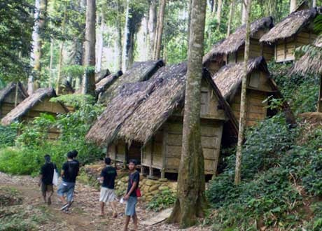 Baduy tribes's houses - the outlandish tribes