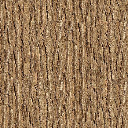 Wooden Tree Texture TreeTextured WallpaperWall