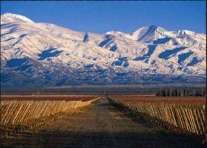Mendoza, Argentina. Malbec + Andes by Marto