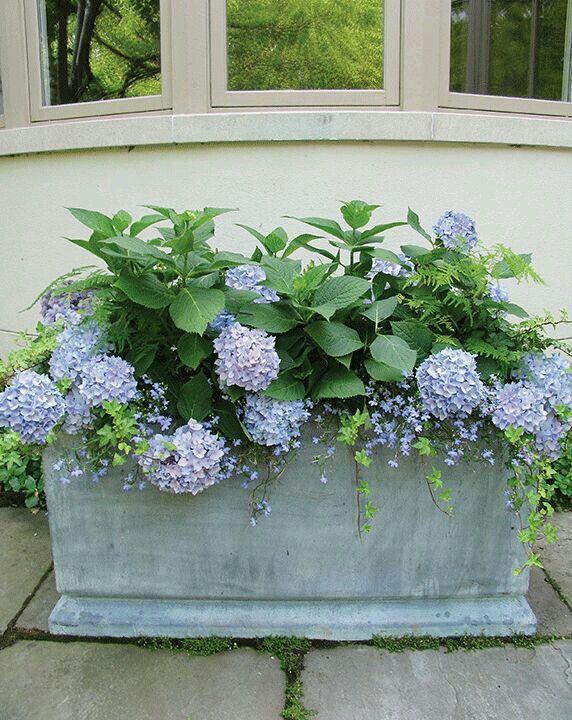 5719 best planters garden pots images on pinterest container 5719 best planters garden pots images on pinterest container plants flower pots and garden pots workwithnaturefo