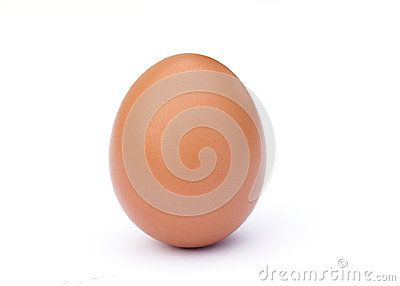 One upright brown egg isolated against a white background.