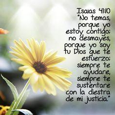 No temas, porque yo estoy contigo; no desmayes, porque yo soy tu Dios que te esfuerzo; siempre te ayudaré, siempre te sustentaré con la diestra de mi justicia. Isaías 41:10