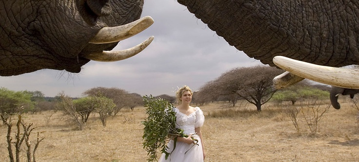 Get married in Africa.