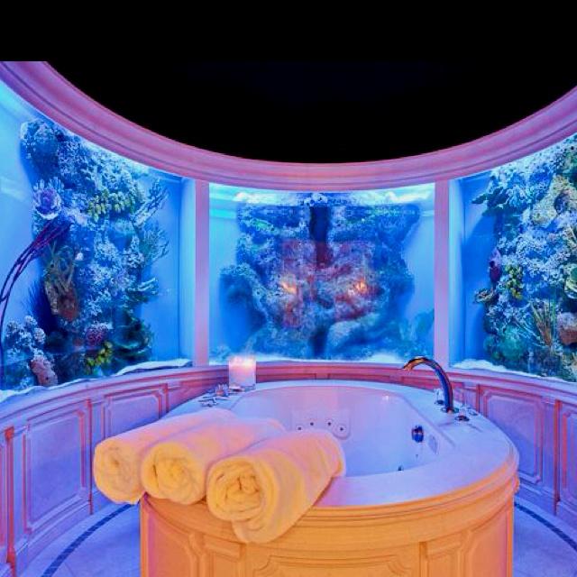 29 best dream bathtubs images on pinterest bathroom for Dream of fish tank