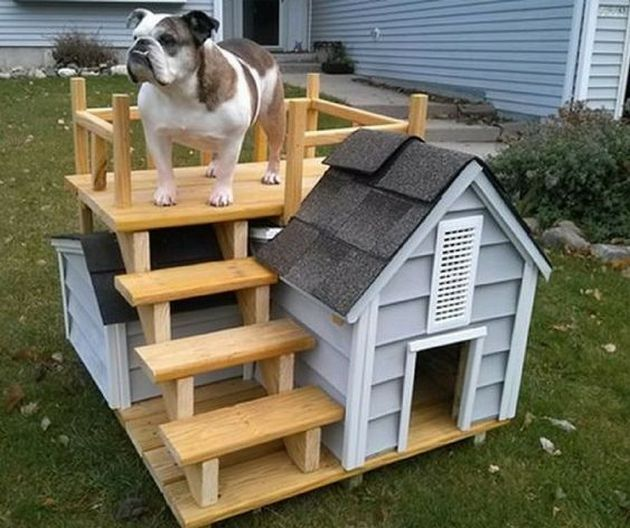 Unique Dog Houses Cool Dog Houses Dog House Diy Outdoor Dog House