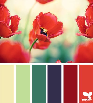 flora palette - design seeds Colour palette idea as I have a red sofa but blue/green pictures