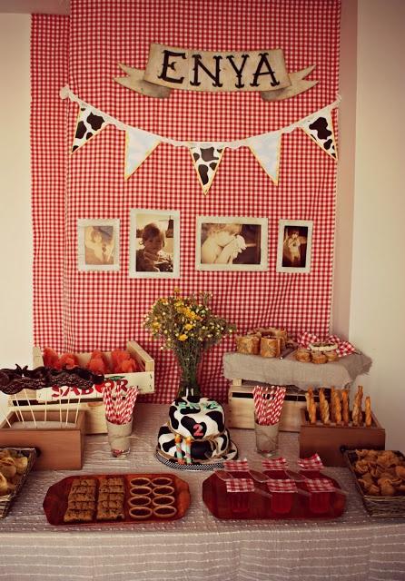 Atias Room: a farm party theme.