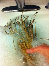 Gloucester Woman Baskets: My Inspiration for Learning Pine Needle Basketry and a Glycerin Bath Recipe to Preserve and Darken the Needles