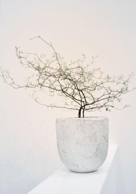 Lovely | ikebana
