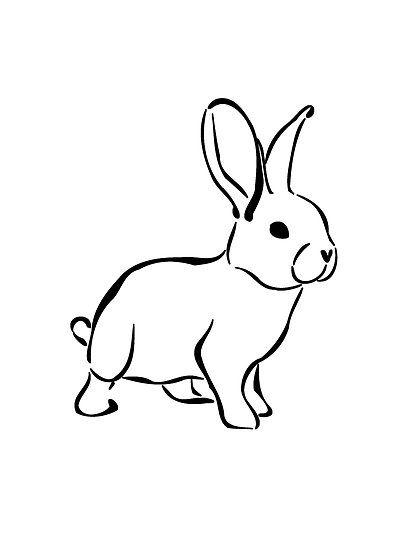 Line Drawing Rabbit : Best bunnies images on pinterest