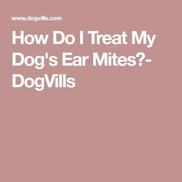 How Do I Treat My Dog's Ear Mites?- DogVills