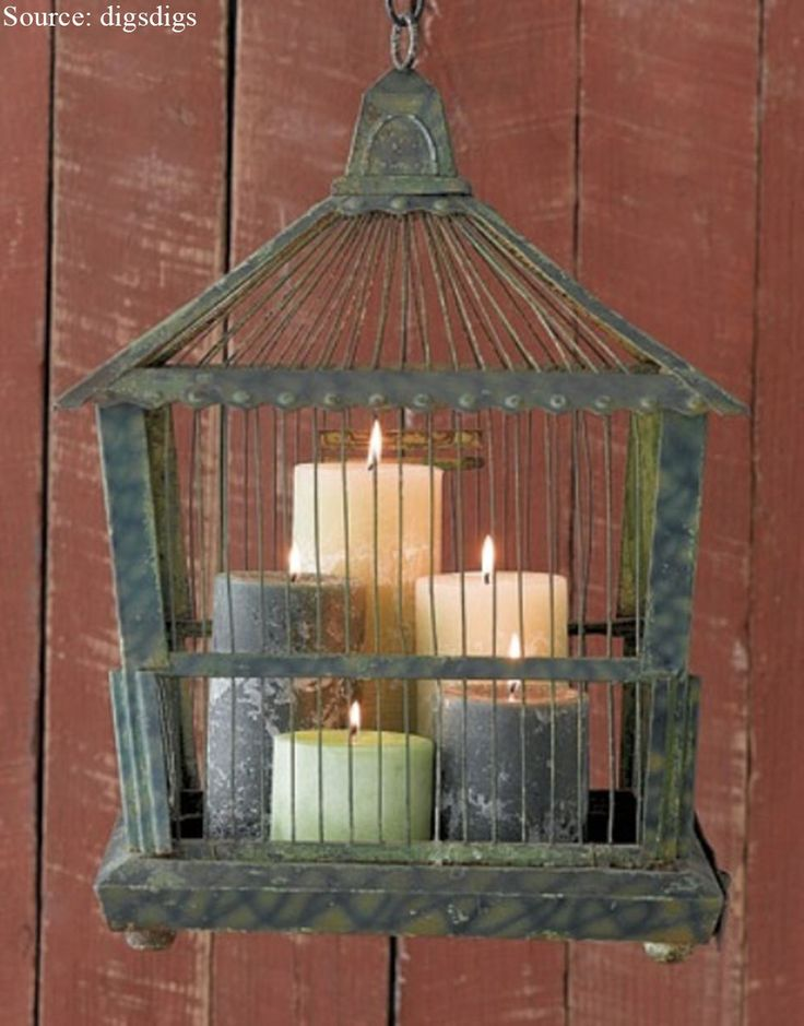 Against a welded metallic sheet on the wall, place the votive candles or the pillar candles and convert the simple vintage bird cage into an excellent candle holder or the night light. It will be well displayed for the living room or as part of a centerpiece for the dining room table.
