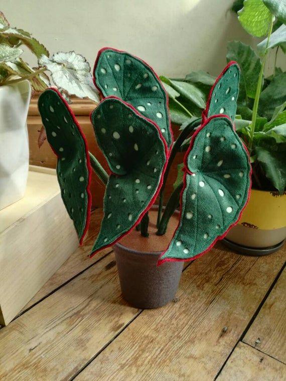 Trout Begonia Botanical Handmade Begonia Inspired Felt