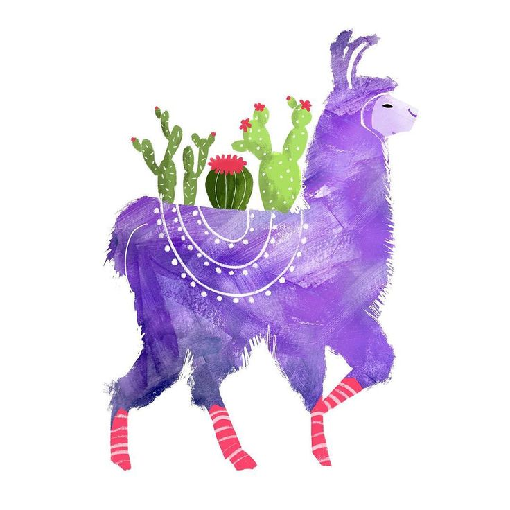 I didn't want to be the only one who kind of over does it with their cacti collection...so I made this llama who has to take it with him all the time. hehe. Anyone else?? ♥️⠀Follow on instagram @heycrystalsmith ⠀ #llama #llamalove #ilovellamas #cacti #cactus #illustratorsofinstagram #instart #illustrationgram #illustrationfriday #digitalillustration #illustrationdaily #dailyillustration #illustrationoftheday⠀ ⠀
