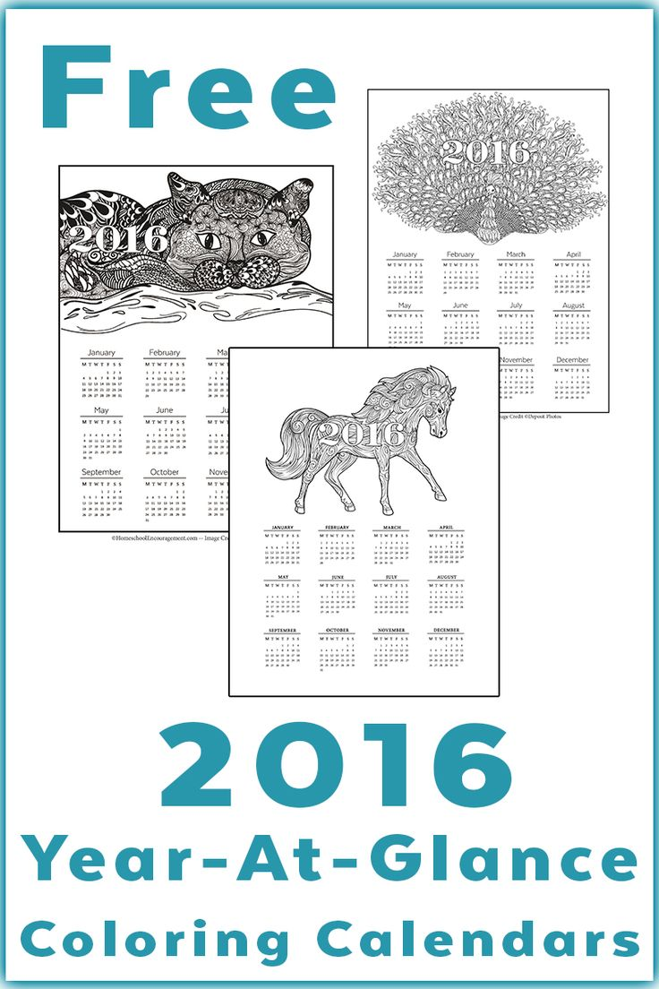 Year Up Calendar : Calendar printable year at a glance grown up coloring