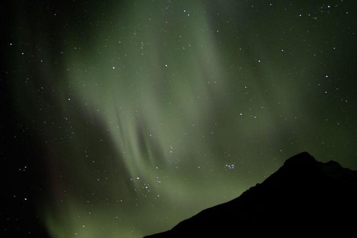 Aurora Borealis, 21/02/17, Skogafoss, Iceland