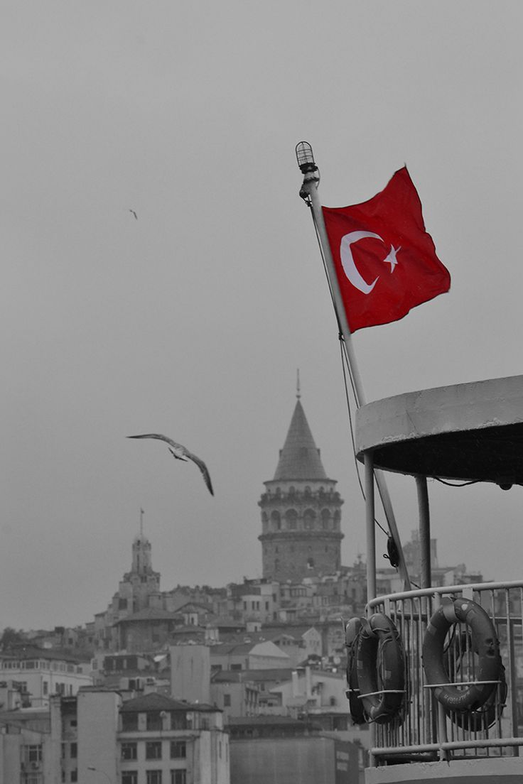 The Great Trio: Turkish Flag, Seagull and Galata Tower