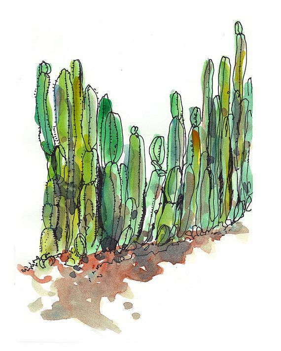 Emerald Green Succulent sketch Cactus fence   8x10 by SketchAway, $20.00