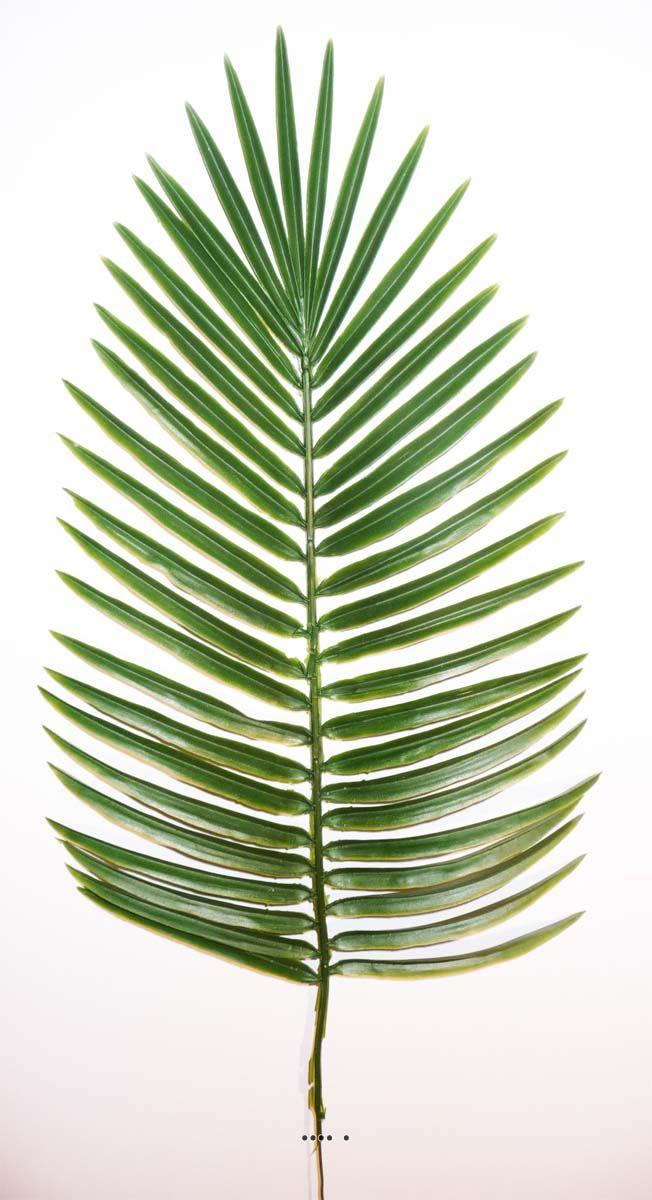 Feuille de palmier Phoenix H 66 cm Plastique pour exterieur D 27 cm du site Artificielles.com.                                                                                                                                                                                 Plus