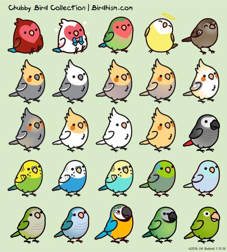 Custom Chubby Bird Sticker Package by Birdhism on Etsy - birds collage
