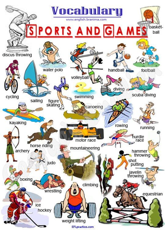 english sports vocabulary class learning beginners