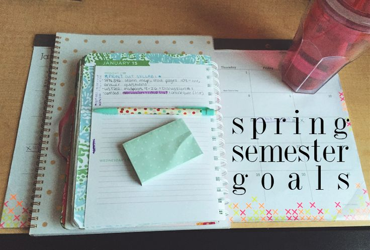 goals for my spring semester of sophomore year.