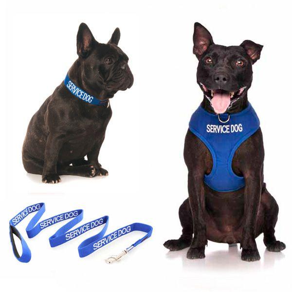 10% off medium blue SERVICE DOG combo sets plus FREE SHIPPING within Australia. Models: French Bulldog & Staffy