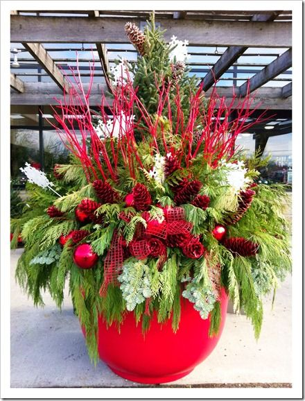 free picture outdoor christmas urn - Google Search : christmas ideas : Pinterest : Free pictures ...