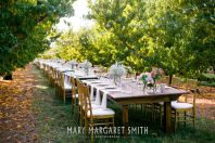 Farm to Table Orchard wedding in Athens, AL at Isom's Orchard. Photo by Mary Margaret Smith Photography, Birmingham, AL #ashleyscreativecatering
