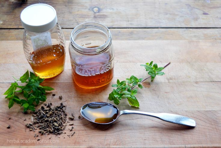 How to Make a Valerian Mint Cordial for sleep - Herbal Academy of New England
