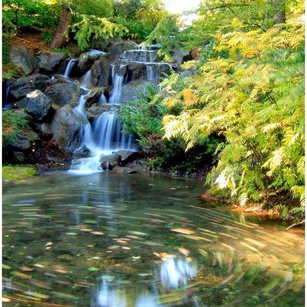 """Discovered by Grace, """"Water Fall and love the whirling movement in the water with falling Autumn leaves."""" at Van Dusen Garden, Vancouver, British Columbia"""