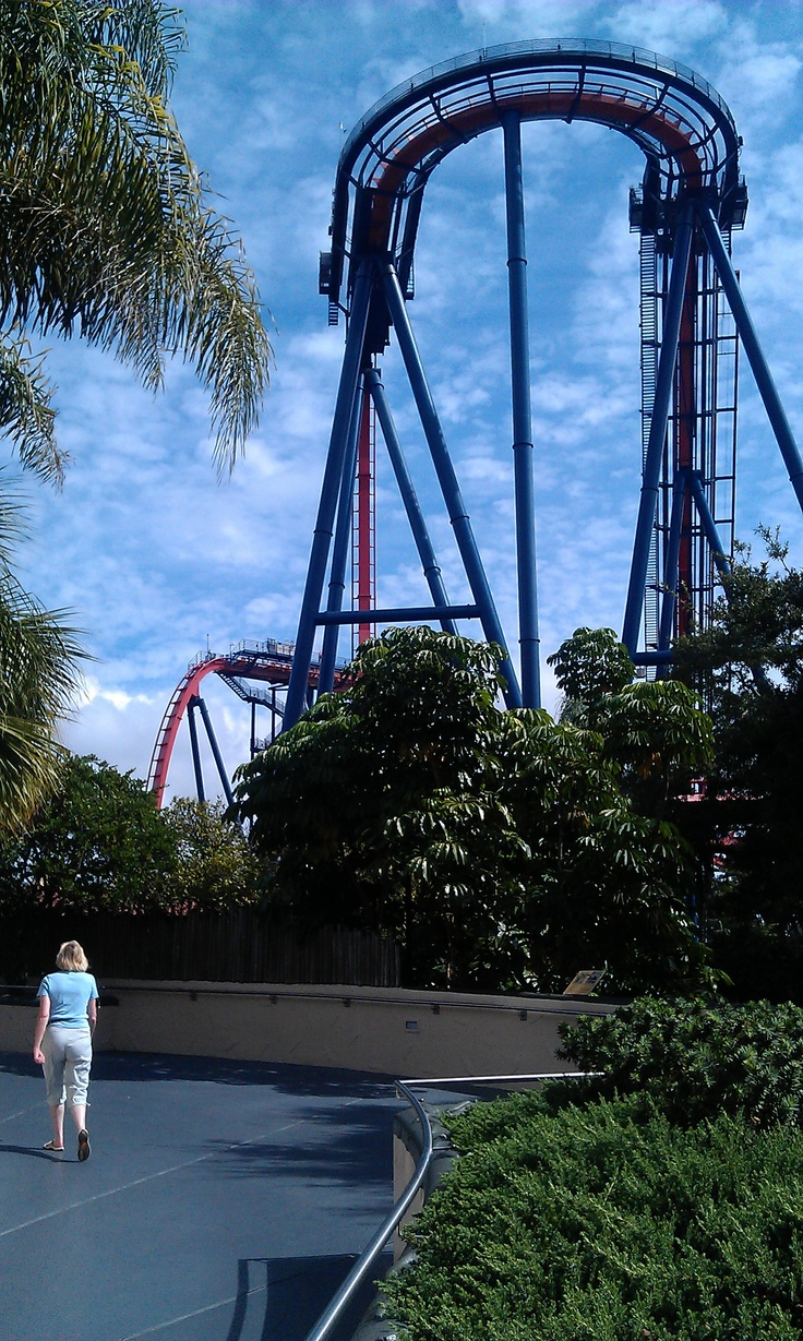 17 Best Images About Busch Gardens Tampa Bay On