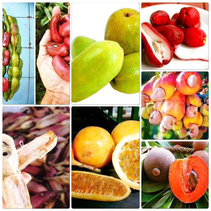Colombia 🇨🇴   Parte de la biodiversidad de Colombia está en las frutas que consumimos en el país todo el tiempo y a las que estamos acostumbrados, sin darnos cuenta de la gran variedad que tenemos a nuestro alcance. De hecho, si quisiéramos, en Colombia podríamos tomar un jugo diferente cada día del año… ¡sin repetir fruta!