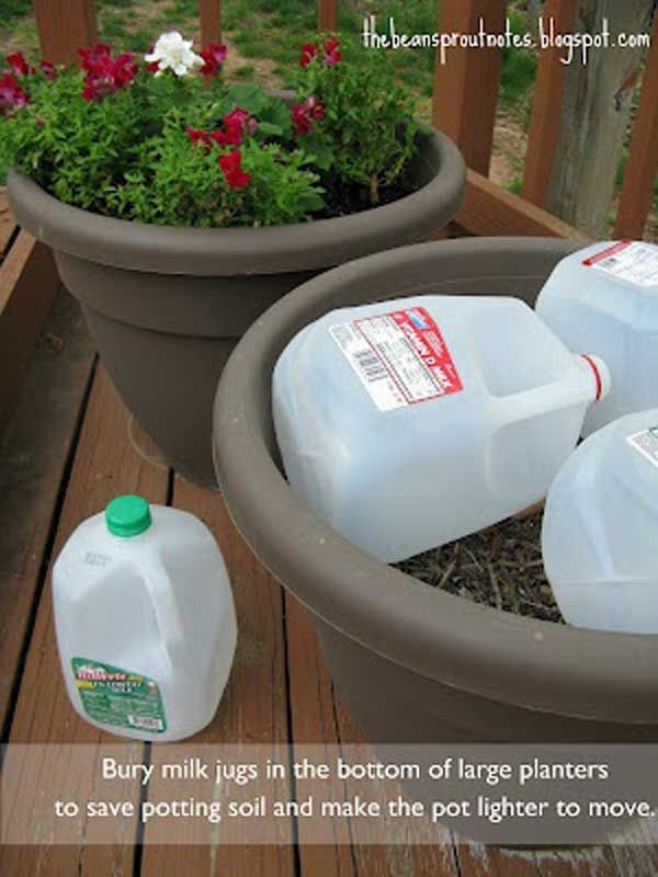 Bury milk jugs at the bottom of large planters, to save potting soil and to make lighter easier to move.
