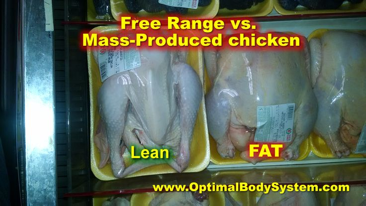 Conventional chickens found in most grocery stores are a far cry from free range chickens.  They are fed an unnatural diet high in processed grains and sometimes vegetable and animal protein, to accelerate growth.  Free range chickens eat grass and insects, making them more lean and nutritious.  http://OptimalBodySystem.com