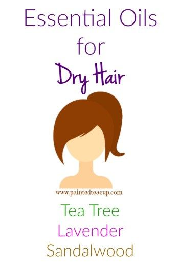 Does your hair feel dry or do you have dry ends? These essential oils provide a natural solution to help you manage it! Get DIY essential oil hair recipes for all hair types!