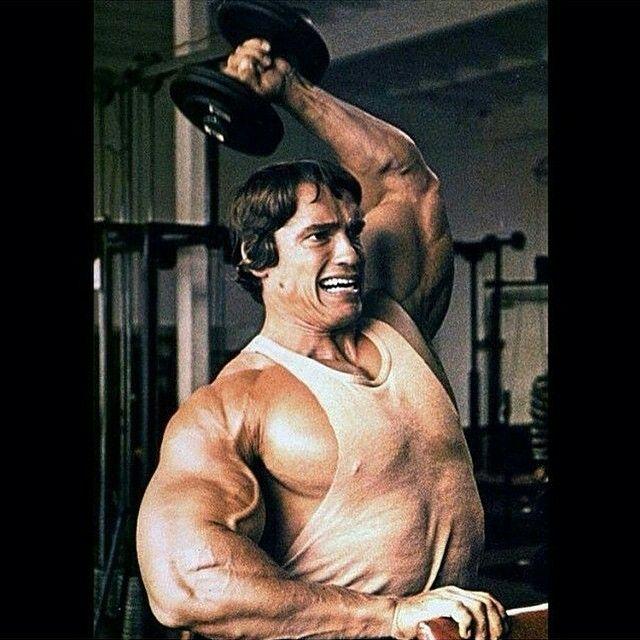 86 best Arnold Schwarz...