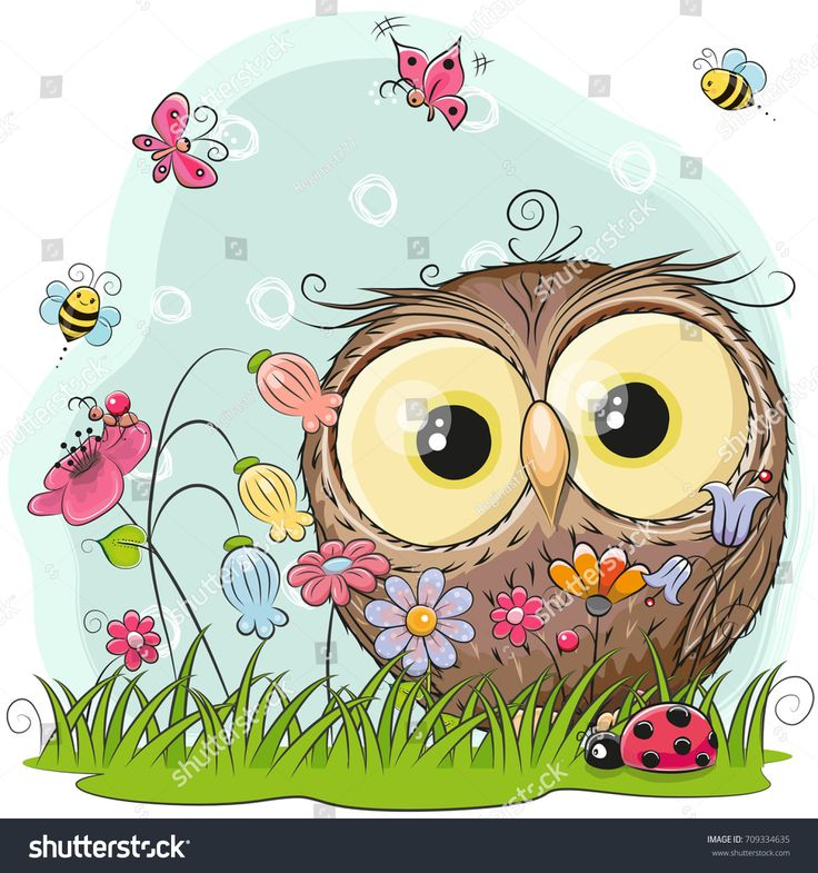 Cute Cartoon Owl Pics Impremedia Net