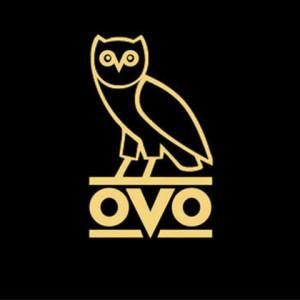 OVO Owl Sticker (1) 4