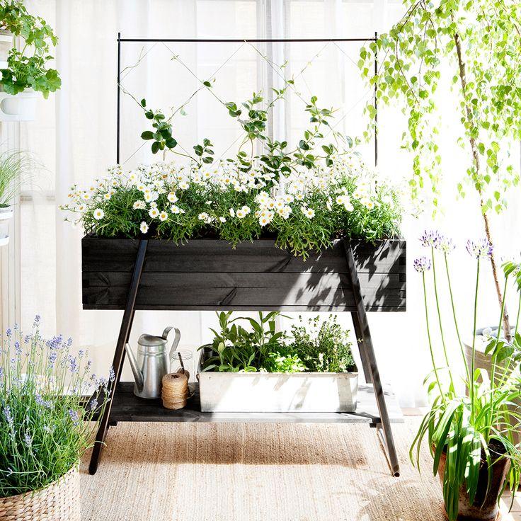 Med Odlingsbänk på ben odlar du blommor, grönsaker, örter och kryddor i praktisk arbetshöjd, på balkongen och uteplatsen.