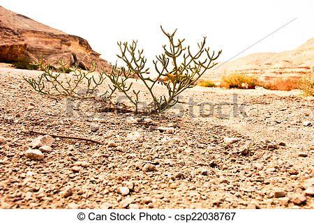 The Desert ElRayan canyon Valley - csp22038767 #Photography #StockPhotography #Art #portfolio #Portrait #Pharaoh #Lightplay #Landscape #IslamicArt #Nature #Chess #Pets #FigurePhotogrpahy #ProductPhotography #NightLife #Abstract #Sea #Ocean #Coffee #Africa #Egypt #Oriental #Vacation #Sky #Toys #Historic #Landmark #Calligraphy #Monkey #desert #Sunset #Background #Oud #Arabian #Minions #Christmas #NewYear2015 #Card #ChristmasCard