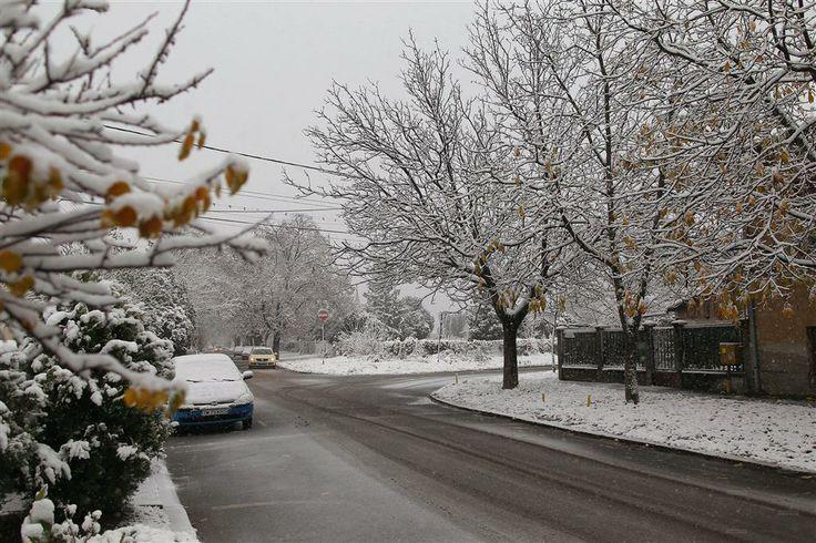 Prima zapada din aceasta iarna la Timisoara! S-a intervenit cu material antiderapant
