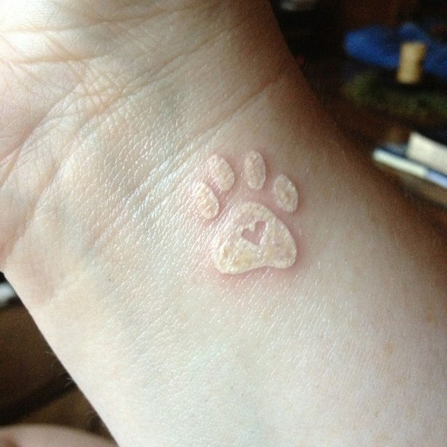 White dog paw print tattoo, maybe without the little heart though!!