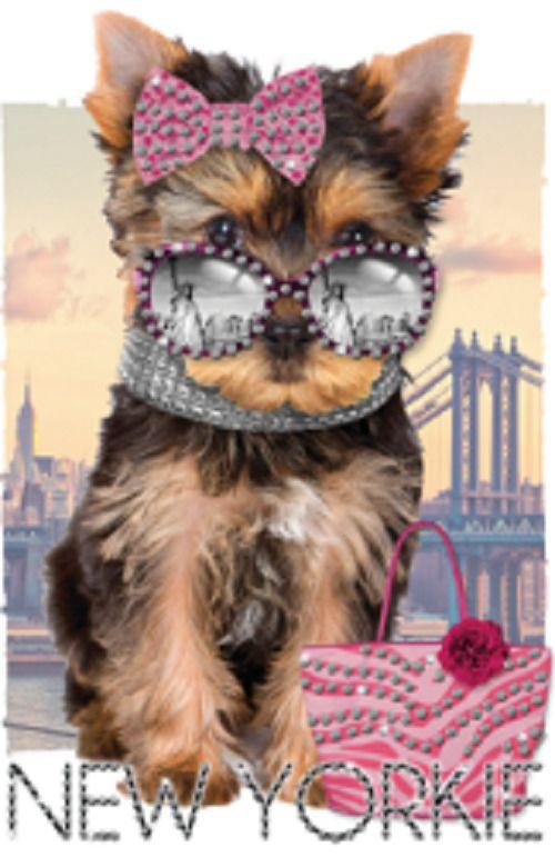 Yorkie Puppy Rhinestone T Shirt Kid Dog Girl Boy Toddler Youth Us P3
