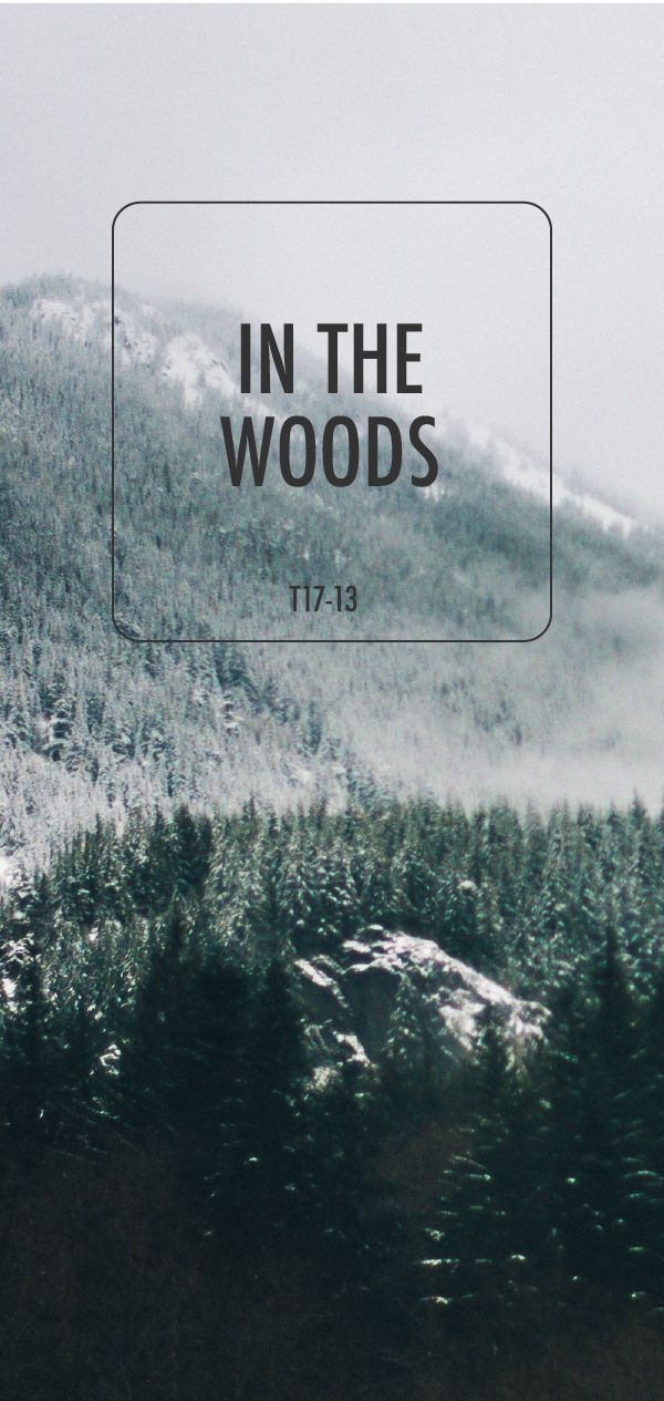 This gorgeous shade of In the Woods from BEHR Paint is the perfect color for your home. This hue is a deep, moody gray color with subtle olive undertones that will make you think of a snowy forest in winter. Check out this stunning color and let BEHR help you pair it with the perfect color palette for your home.