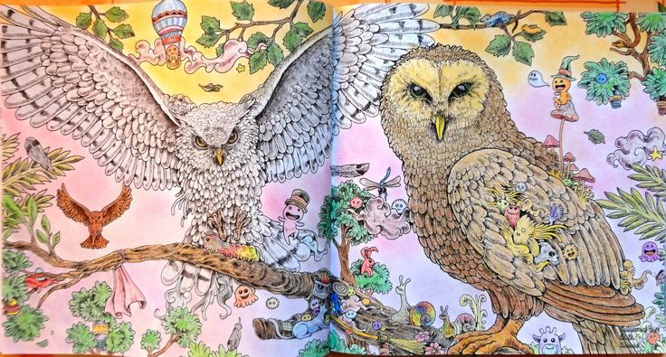 Animorphia - Owls Coloured with Derwent Coloursoft